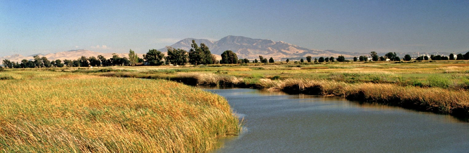 San Joaquin River Delta with Mount Diablo in the background. Photo credit: Commission staff